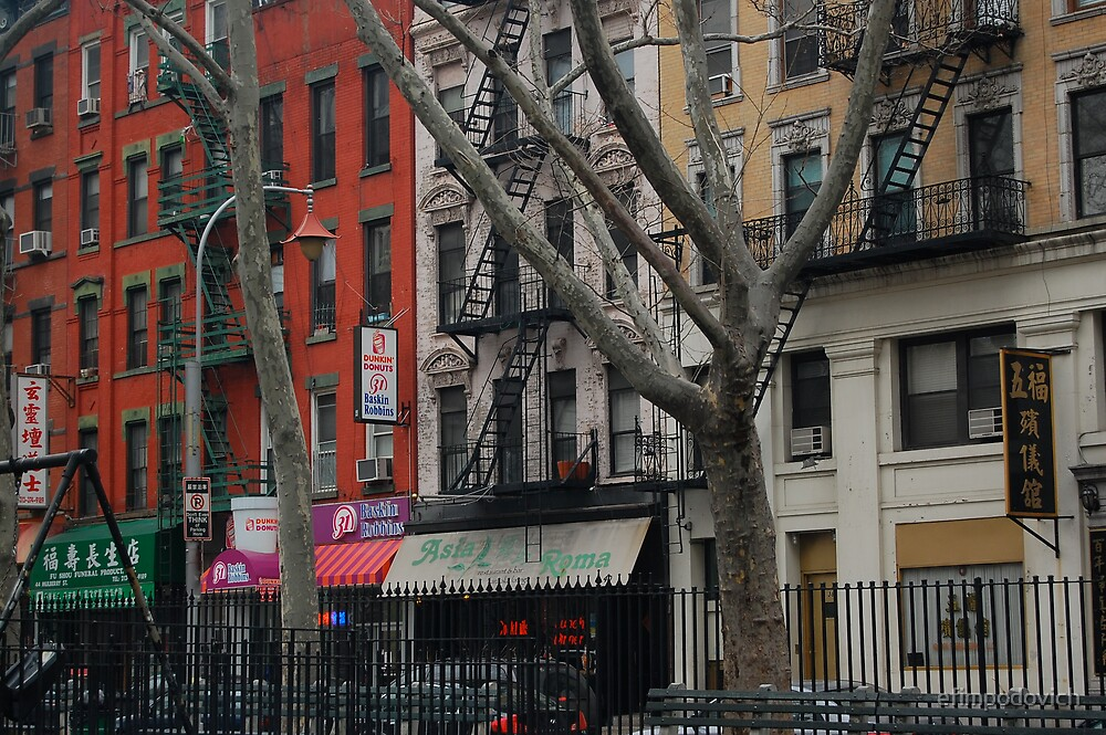 Street in chinatown,new York by efimpodovich