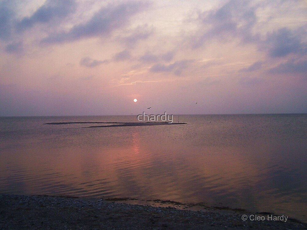 End of Day by chardy