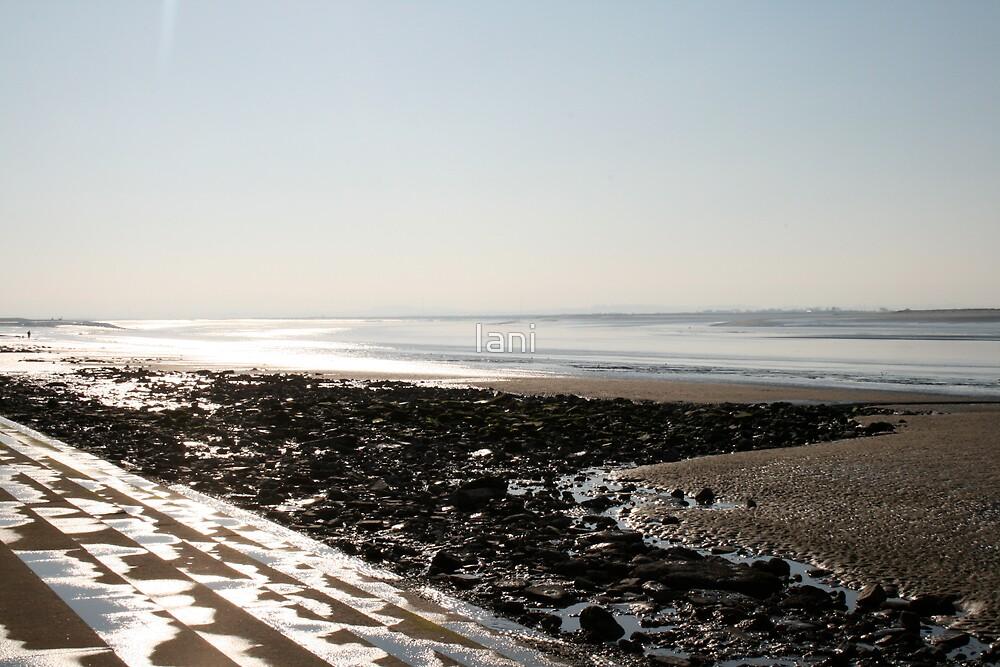 steps to the sea by Iani