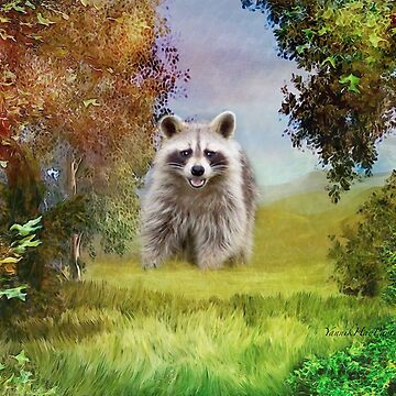 Racoon by Photograph2u