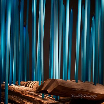 Glass Work - Forest by Photograph2u