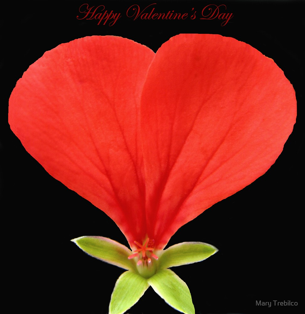 Happy Valentine's Day!! by Mary Trebilco