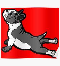 Boston Bull Terrier Puppy Black and White Poster