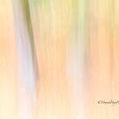 Autumnal Impressions by Yannik Hay
