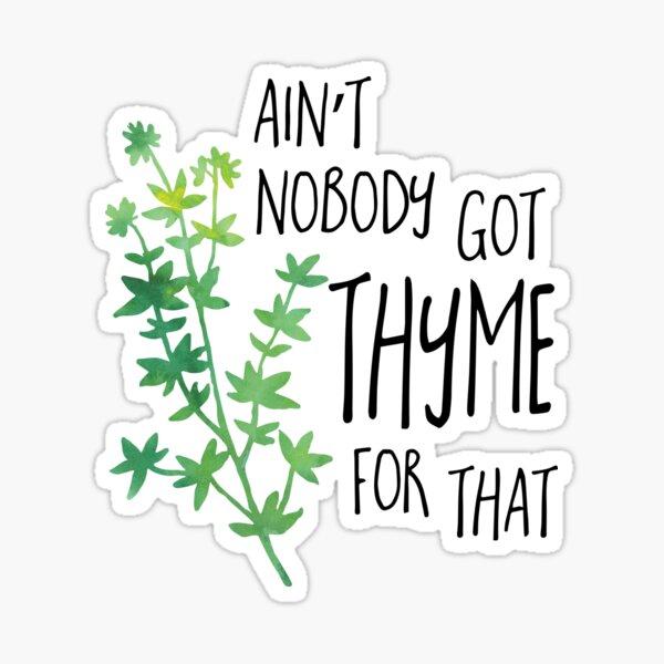 Ain't nobody got THYME for that - pun Sticker