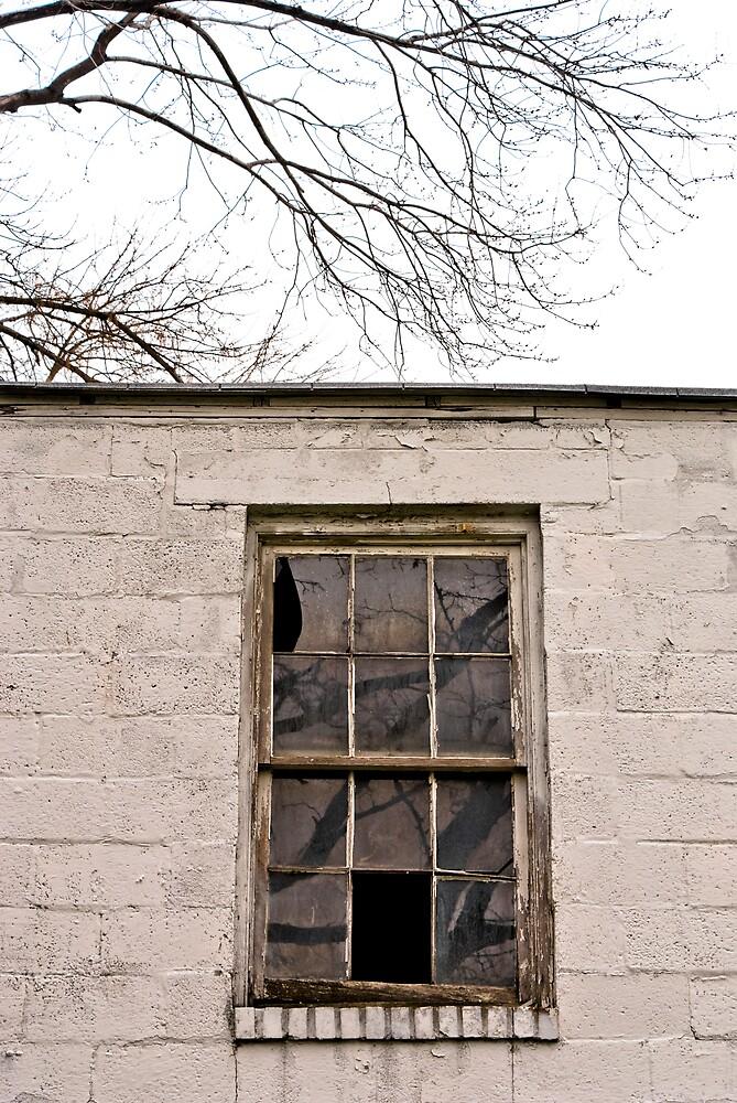 Window Reflection by Rod  Adams