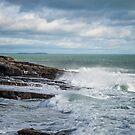 Coast off the Hook Lighthouse by Martina Fagan