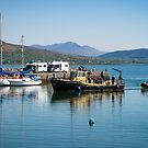 Carlingford Harbour by Martina Fagan
