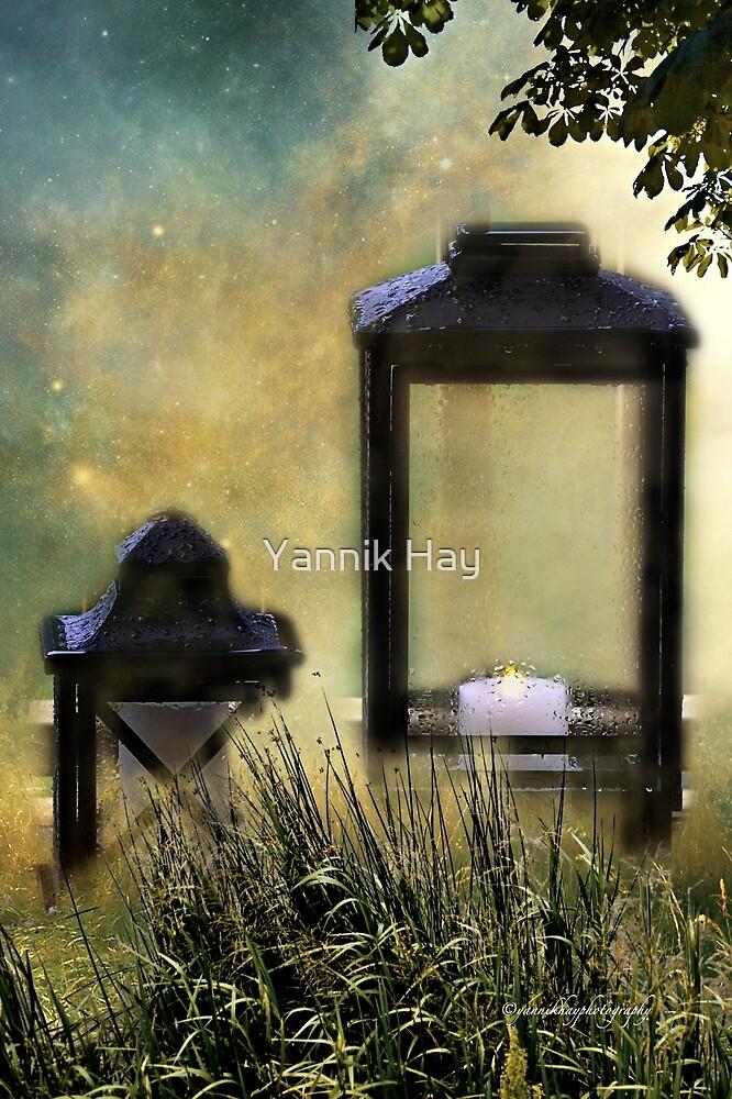 Spring Shower (Lanterns) by Yannik Hay