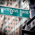 WhiteDove Drive by WhiteDove Studio kj gordon