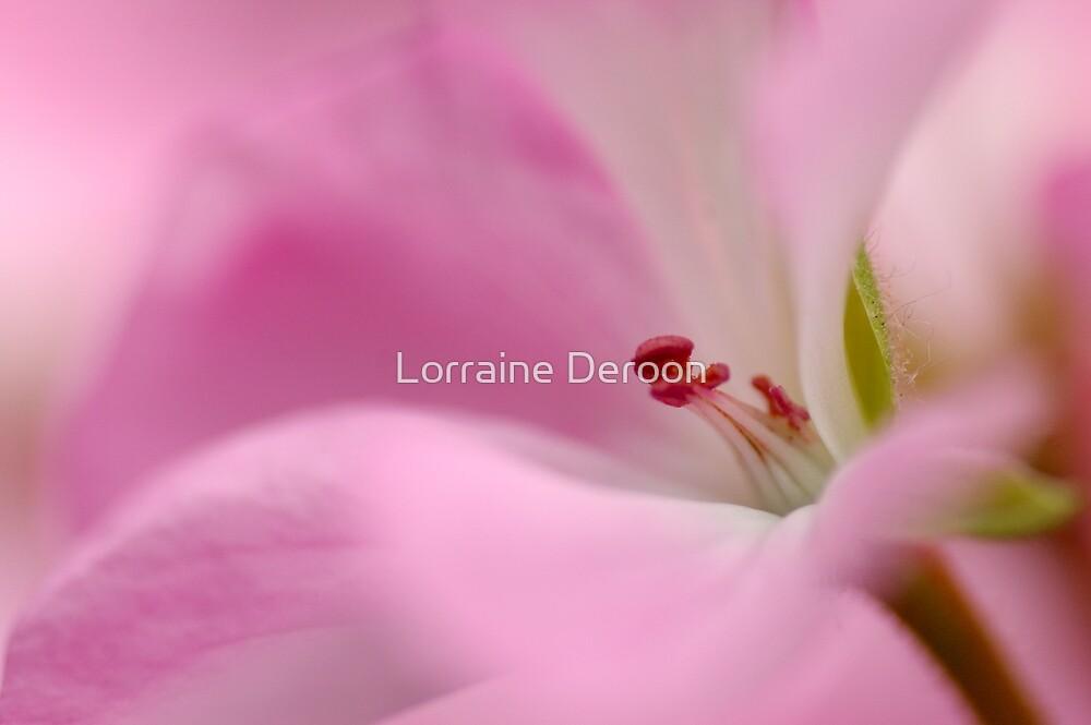 Pink Passion by Lorraine Deroon