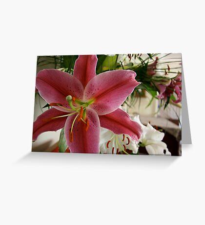 Pink Lilium Greeting Card