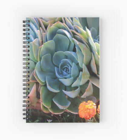 Echeverias after the rain Spiral Notebook