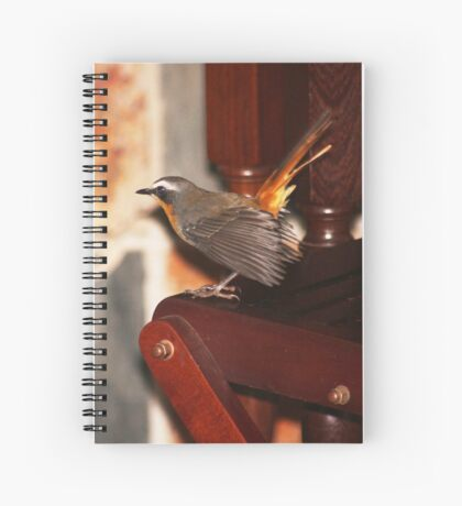 Robin in my house Spiral Notebook