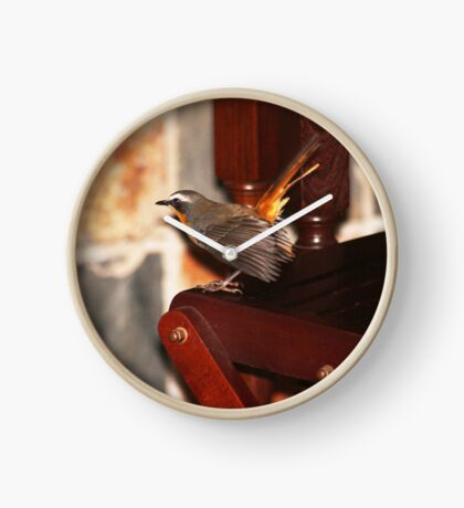 Robin in my house Clock