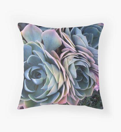 Autumn Echeveria imbricata Throw Pillow