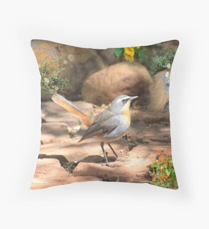 Robbie in my garden Throw Pillow