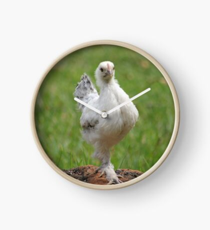 Farm talk - Snoodles, a chick with attitude! Clock