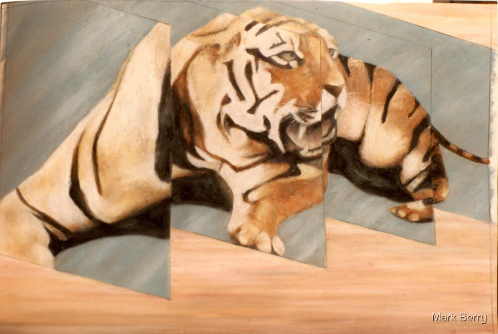 Tiger Cube by Mark Berry