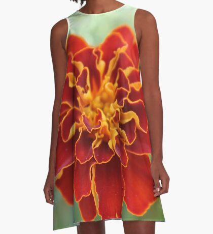 Oh! Marigold! A-Line Dress