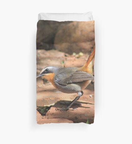 Cape Robin (Cossypha caffra) Duvet Cover