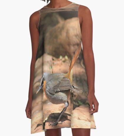 Cape Robin (Cossypha caffra) A-Line Dress