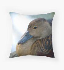 Black Duck Resting Throw Pillow