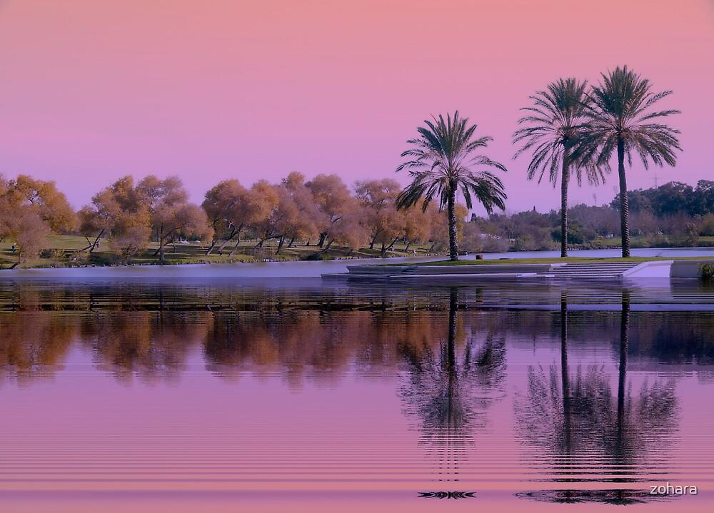 sunset  #2 by zohara