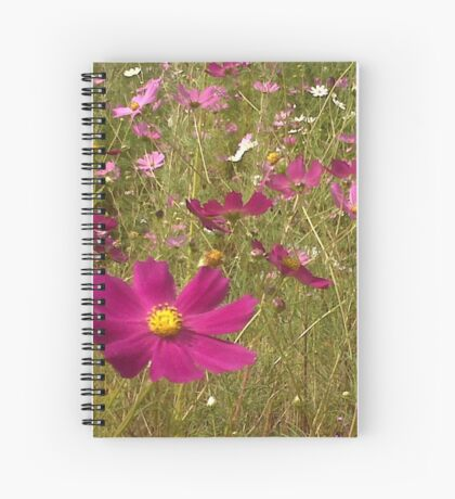 Remembering the Cosmos Spiral Notebook