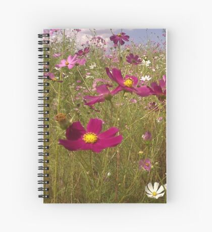 Crawling among the Cosmos Spiral Notebook