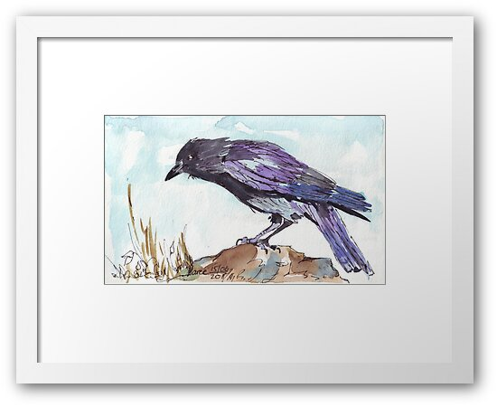 The playful Crow - Coco by Maree Clarkson
