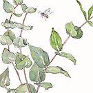 Zahnfleisch und Bienen - botanische Illustration von Maree Clarkson