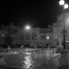 Night bathing in Budapest (b&w) by zumi