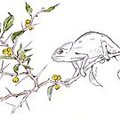 Kei-apple and a Chameleon - Botanical illustration by Maree Clarkson