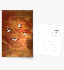 Treegulls Postcards