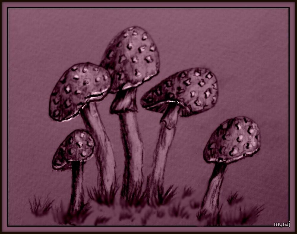 Tiny Mushrooms ...  Pencil Sketch by myraj