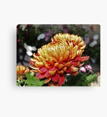 Mothers Day Flowers Canvas Print