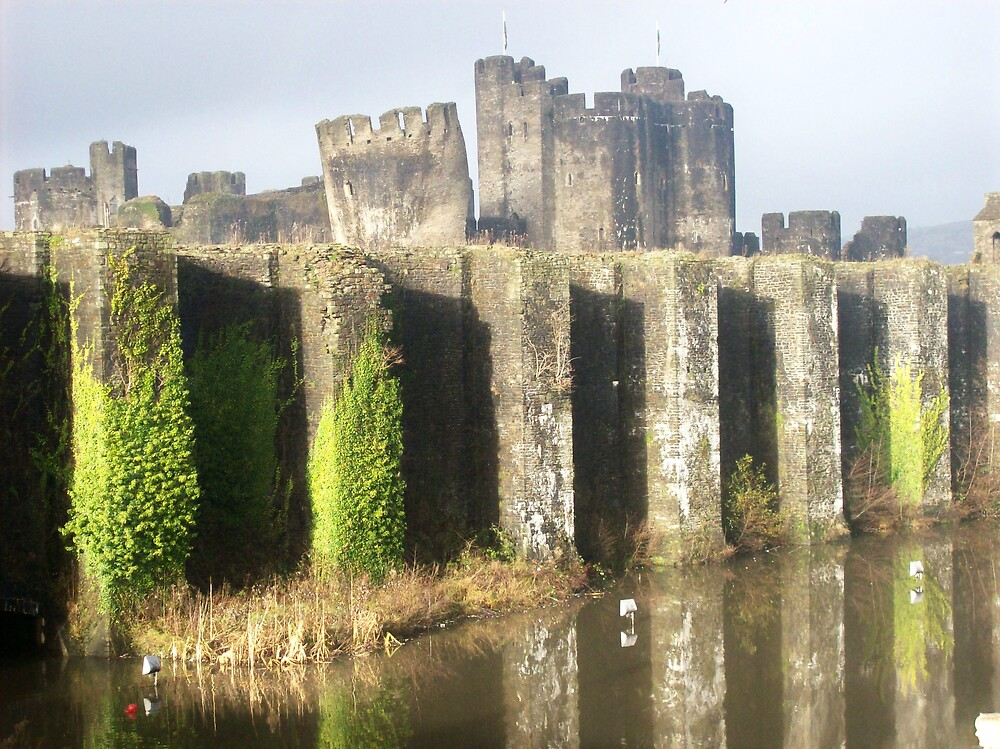 Caerphilly Castle by Emma Fitzgerald