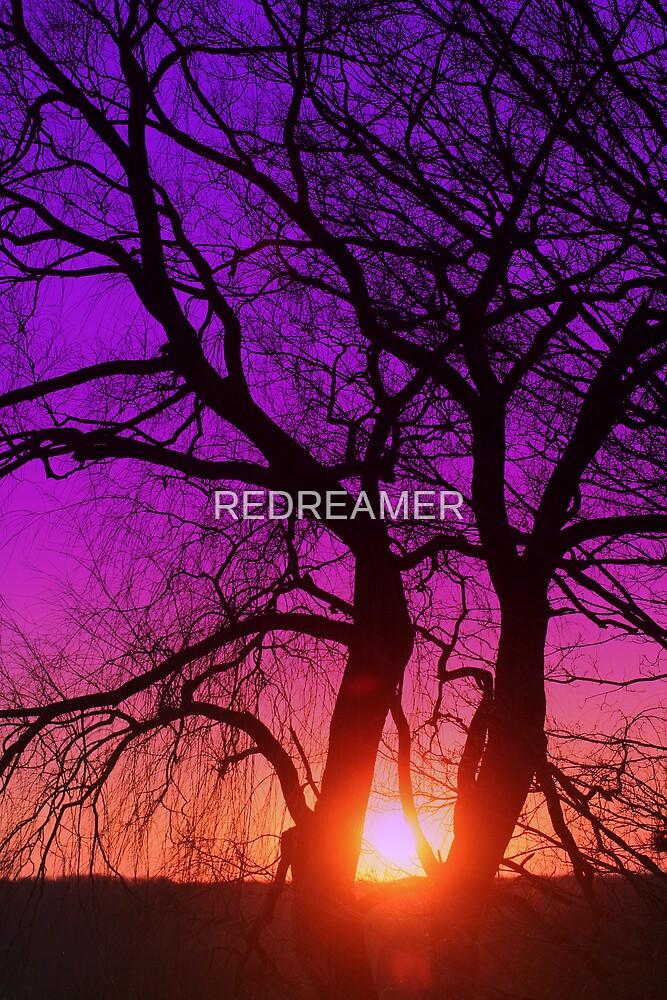 SUNSET HUBRIS by REDREAMER