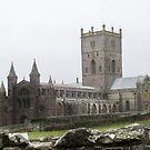 St Davids Cathedral  by Emma Fitzgerald
