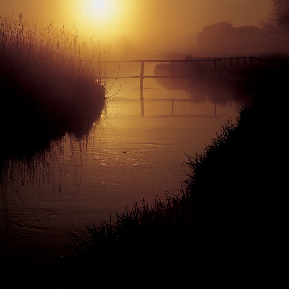 Bridge on River Test by jephoto