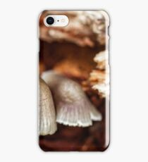 The silent gardian of the three sisters iPhone Case/Skin