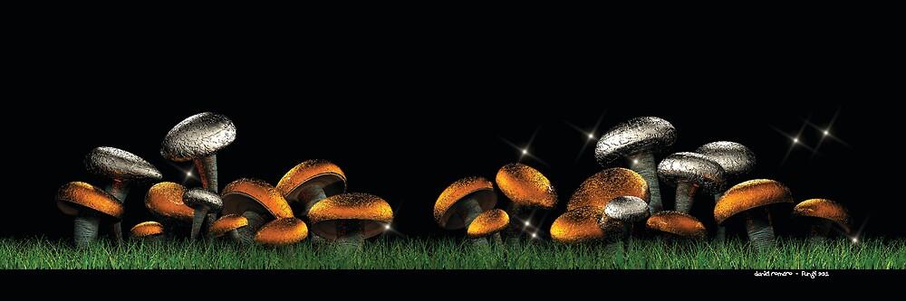 Fungi901 by Daniel Romero