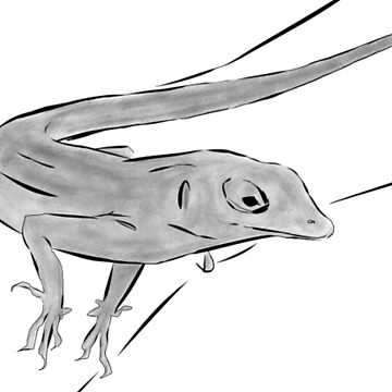 Anole by GreenMountainT