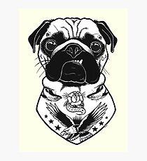 Tattooed Dog - Pug Photographic Print