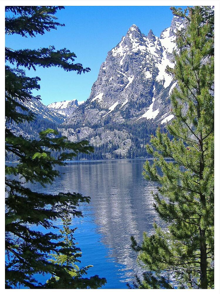 Reflection at Jenni Lake by avocet