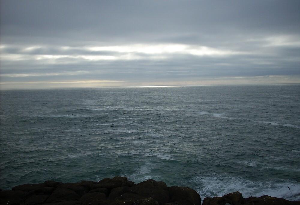 Ocean View by LadyHawk