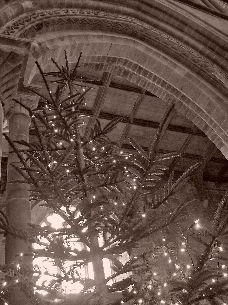 Christmas at St Davids by Emma Fitzgerald