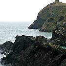 St Davids Coast by Emma Fitzgerald
