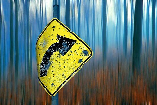 1457 Road Sign  by Hans Kawitzki